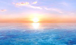 Sea Light Wellness Center(シーライト)。新静岡のカウンセリング・悩み相談・ホリスティックヒーリング